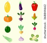 set of vegetables  melon ... | Shutterstock .eps vector #368844662