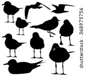 Mallard duck silhouette