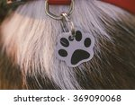 Stock photo collar medallion for dogs with space for it s name 369090068