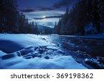 Frozen River Among Conifer...