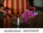 beautiful purple flowers on the ... | Shutterstock . vector #369199655
