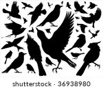 set of silhouettes of various...