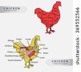 basic chicken internal organs...   Shutterstock .eps vector #369552566