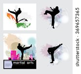sport. karate illustration  | Shutterstock .eps vector #369657365