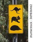australian road sign with... | Shutterstock . vector #369836462
