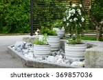 Flower Pots With Green And...