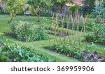vegetable garden | Shutterstock . vector #369959906