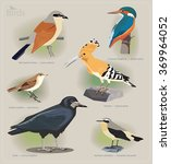 image set of birds  red backed... | Shutterstock .eps vector #369964052