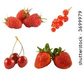 four kinds of red berries... | Shutterstock . vector #3699979