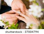 couple   he is proposing... | Shutterstock . vector #37004794