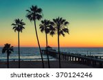 palm trees at manhattan beach....