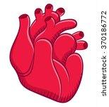 naturalistic real heart | Shutterstock .eps vector #370186772