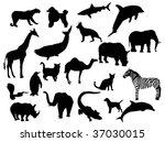 animals | Shutterstock .eps vector #37030015