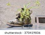 Strange Unusual Plant Pot