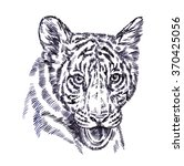 engrave ink draw tiger... | Shutterstock . vector #370425056