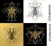 insect spiritual geometric... | Shutterstock .eps vector #370484945