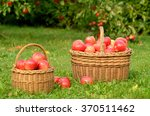 Two Wicker Baskets Full Of Red...