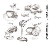 vector tea hand drawing with... | Shutterstock .eps vector #370552808