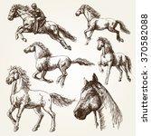 Stock vector horses hand drawn set 370582088