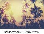 tropical hawaiian beach in... | Shutterstock . vector #370607942
