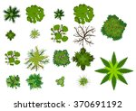 foliage   vector illustration | Shutterstock .eps vector #370691192
