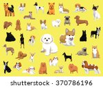 various small dog breeds poses | Shutterstock .eps vector #370786196