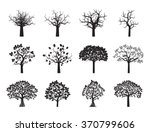 collection of black trees.... | Shutterstock .eps vector #370799606