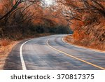 beautiful long way road along... | Shutterstock . vector #370817375