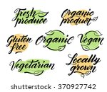 hand drawn healthy food brush... | Shutterstock .eps vector #370927742