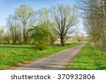 Road Through Landscape With...
