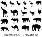 Animals Set  Wild Animal...