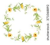 frame of flowers calendula... | Shutterstock .eps vector #371068892
