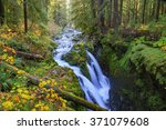 Sol Duc waterfall in rainforest at Olympic National Park, Oregon Coast - stock photo