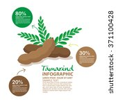 tamarind vector | Shutterstock .eps vector #371100428