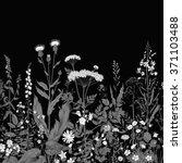 vector seamless floral border....   Shutterstock .eps vector #371103488