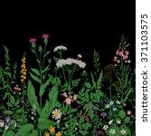 vector seamless floral border....   Shutterstock .eps vector #371103575
