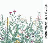 vector seamless floral border.... | Shutterstock .eps vector #371117318