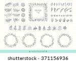 flowers  leaves  frames ... | Shutterstock .eps vector #371156936