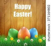 easter eggs and grass with a... | Shutterstock .eps vector #371164802