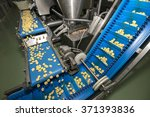 tortellini pasta production... | Shutterstock . vector #371393836