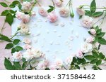 beautiful  of pink rose on... | Shutterstock . vector #371584462