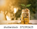money tree with coin for... | Shutterstock . vector #371592625