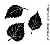 Set Of Plant Pictograms  Birch...