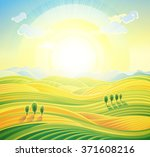 summer sunrise rural landscape... | Shutterstock . vector #371608216
