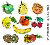 set of sketch fruits white... | Shutterstock .eps vector #371637886
