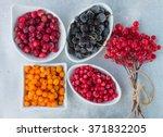 frozen berries on a grey... | Shutterstock . vector #371832205