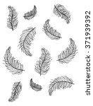 hand drawn feathers on white... | Shutterstock . vector #371939392