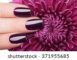 very beautiful red nails close... | Shutterstock . vector #371955685