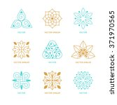 vector set of logo design... | Shutterstock .eps vector #371970565