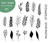 hand drawn floral elements in... | Shutterstock .eps vector #372094222